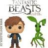Bundle Funko Pop! Movies Fantastic Beasts Newt Scamander (Egg) +Pickett