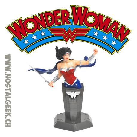 DC Heroes Wonder Woman Action Mode 3D Puzzle