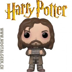 Funko Pop Harry Potter Sirius Black Vinyl Figure