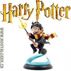 QFig Harry Potter Fisrt Flight