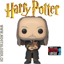 Funko Pop NYCC 2019 Harry Potter Filch & Mrs. Norris Exclusive Vinyl Figure