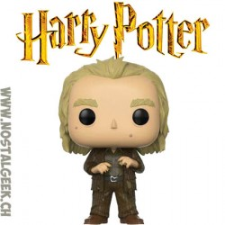 Funko Pop Harry Potter Peter Pettigrew Vinyl Figure