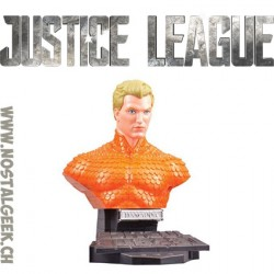 DC Comics Justice League 3D Puzzle Aquaman