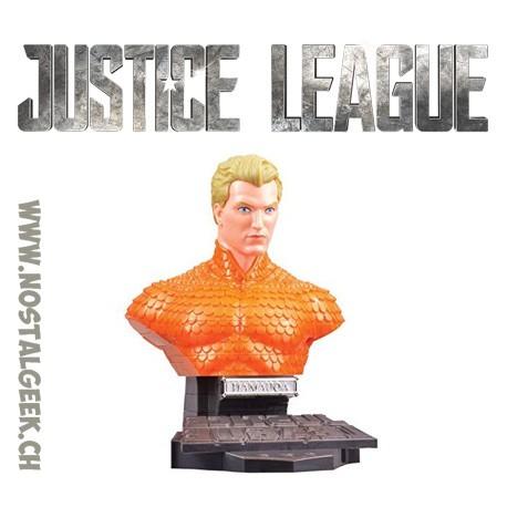 DC Comics Justice League 3D Puzzle Aquaman