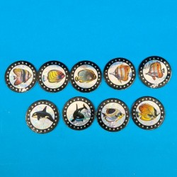 Set of 4 second hand Pogs Fish (Loose)