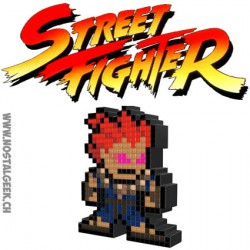 Capcom Street Fighter Ryu Pixel Pals Light up