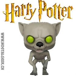Funko Pop Harry Potter Werewolf Remus Lupin Edition Limitée